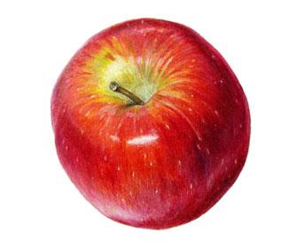 """Яблоки """"Бреберн"""""""
