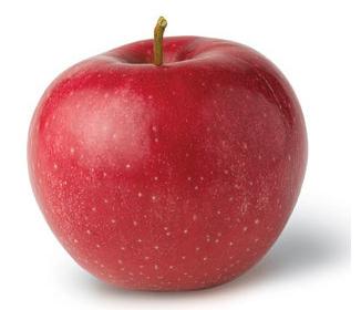 яблоки эвелина